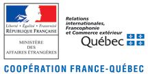 logo IC-IMPACTS