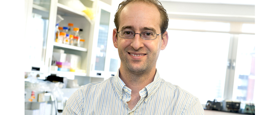 Andrés Finzi, a principal scientist of the immunopathology axis, is the recipient of the 2019-Joe Award for Young Investigator by the Canadian Society for Clinical Investigation. CREDIT : CRCHUM