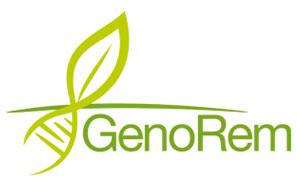 Mohammed Hijri est codirecteur du Projet GenoRem. GenoRem réunit des chercheurs de plusieurs horizons qui mettent en commun leur expertise afin de trouver des éléments de solution susceptibles d'améliorer les techniques vertes de décontamination des sols pollués.
