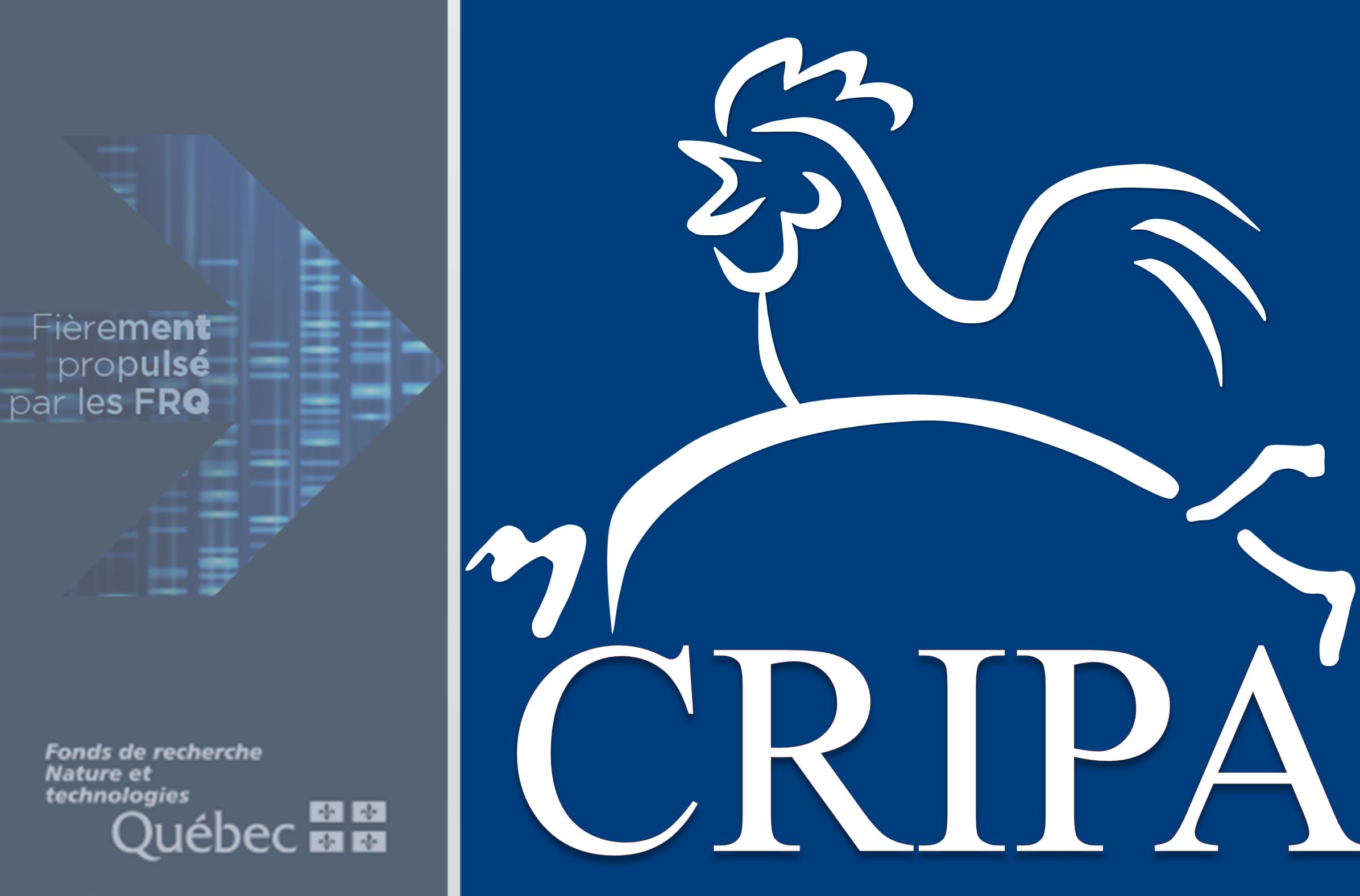 Le CRIPA, c'est mélanger les talents des secteurs académique, privé et gouvernemental du Québec pour innover et améliorer la santé porcine et avicole.