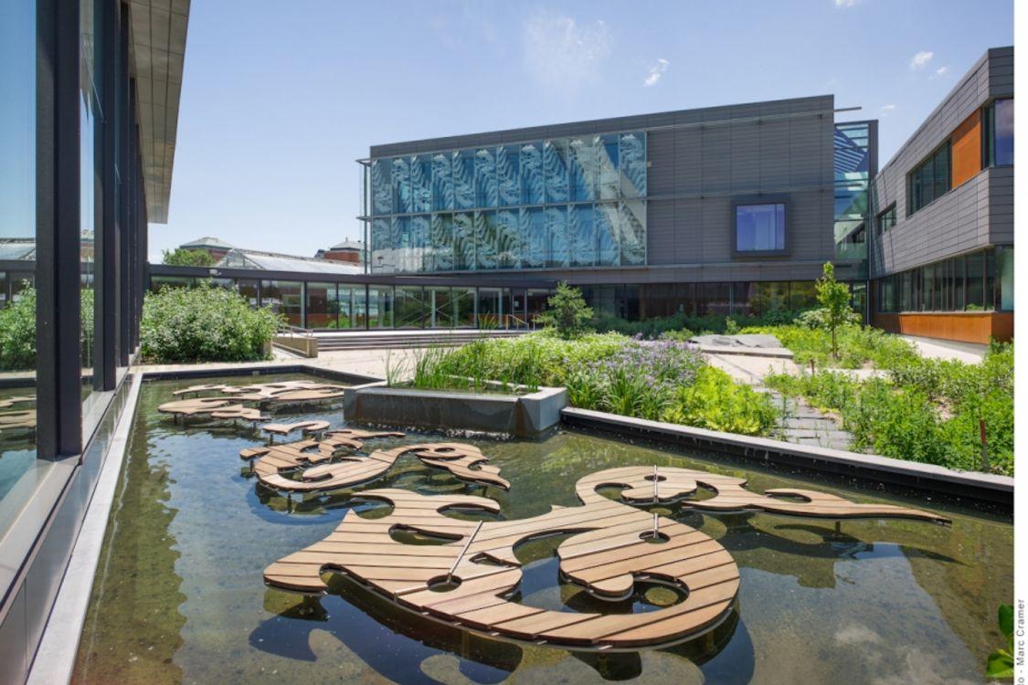 Le Centre sur la biodiversité de l'Université de Montréal possède ;a certification LEED Canada Or délivrée par le Conseil du bâtiment durable du Canada. - © UdeM